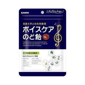 カンロ ボイスケアのど飴 ( 90g ) ( 飴 乾燥対策 )