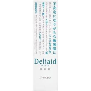 資生堂 デリエ クレンジングフォーム ( 120mL )/ デリエ