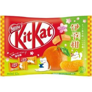 キットカッ ト ミニ いよかん ( 12枚入 )/ キットカット ( チョコレート ホワイトデー 義...