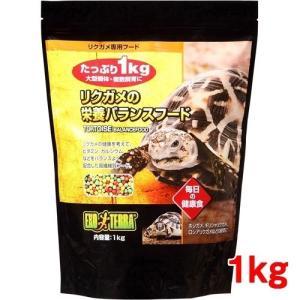 エキゾテラ リクガメの栄養バランスフード ( ...の関連商品2