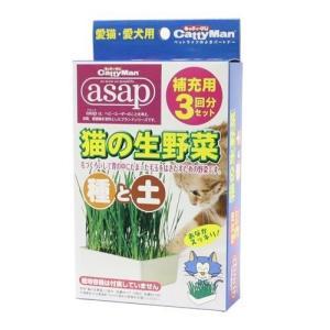 キャティーマン 猫の生野菜 種と土 ( 3回分 )/ キャティーマン|soukai