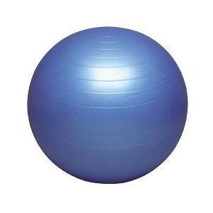 バランスボール セイフティー DB55 ( 55cm )/ ハタ(HATA)|soukai