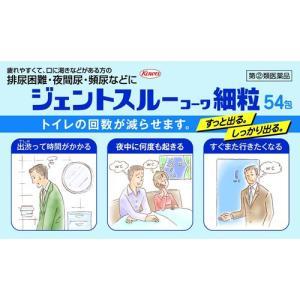 (第(2)類医薬品)ジェントスルーコーワ 細粒 ( 54包 )