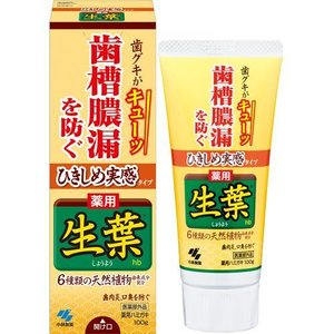 小林製薬 ひきしめ生葉 ( 100g )/ 生葉 ( 歯磨き粉 口臭予防 )