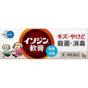 (第3類医薬品)イソジン軟膏 ( 5g )/ イソジン