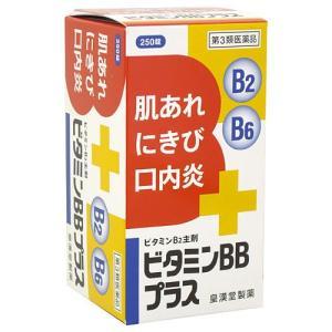 (第3類医薬品)ビタミンBBプラス「クニヒロ」 ( 250錠 )/ クニヒロ|soukai