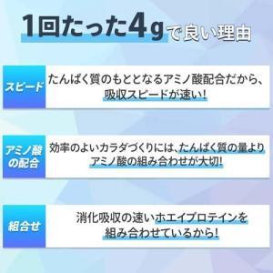 アミノバイタル アミノプロテイン 甘さスッキリチョコレート味 ( 60本入*2コセット )/ アミノバイタル(AMINO VITAL)|soukai|04
