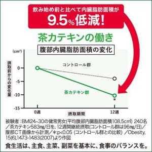(訳あり)花王 ヘルシア 緑茶 ( 1.05L*12本入 )/ ヘルシア|soukaidrink|03