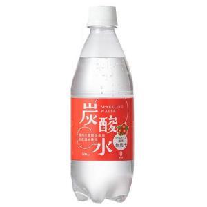 (訳あり)国産 天然水仕込みの炭酸水 ローズヒップ ( 500mL*24本 )|soukaidrink