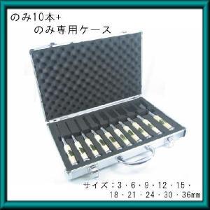 追い入れ鑿 ノミ 追入れ鑿 10サイズセット(3〜36mm)ノミケース付 常勝|soukoukan