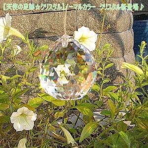 サンキャッチャー  スワロフスキー オーロラAB 選べるチャクラカラー soulmate-lotus