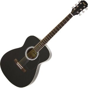 Legend アコースティックギター フォークタイプ FG-15/BK