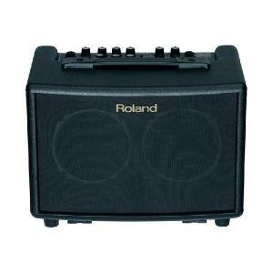 Roland アコースティックギターアンプ AC33
