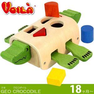 S231C VOILA ボイラ / ジオクロコダイル GEO CROCODILE 木のおもちゃ 18ヶ月- Edute エデュテ   (334-130408-075)|souryou0interior