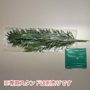 七夕 笹 バンブーツリー180cm soushokuya 03