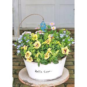 母の日誕生日 花寄せ植えおまかせ ナチュラルアンティークブリ...