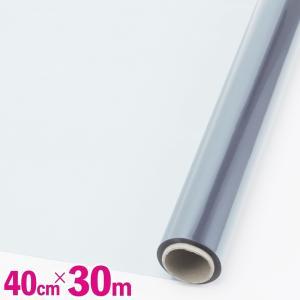 トレーラー型 黒色 ケース付き 恐竜 フィギュア セット 子供 おもちゃ 古代 生物 人形 模型 車 モデル ミニチュア リアル ダイナソー (送料無料)hos-d27|southernwind