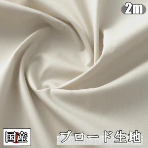 トレーラー型ケース付き ミニカー 黒色 4車 セット 車両 車 子供 おもちゃ スポーツカー レーシングカー 模型 モデル (送料無料)hos-h31|southernwind