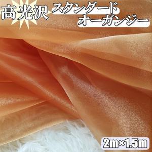 水槽用 サンゴ アクアリウム オーナメント パターンA 人工 オブジェ 熱帯魚 隠れ家 装飾 デコレーション 貝がら ディスプレイ 岩  (送料無料)hos-j22|southernwind