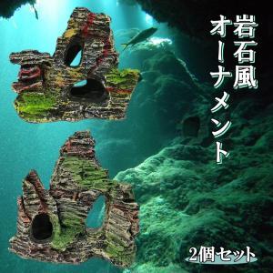 水槽 岩 アクアリウム オーナメント 2種 セット A 樹脂 製 模型 熱帯魚 飼育 飾り オブジェ 背景 水景 風景 装飾 岩石 コケ   (送料無料)hos-j55|southernwind