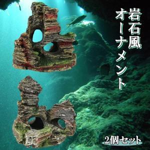 水槽 岩 アクアリウム オーナメント 2種 セット B 樹脂 製 模型 熱帯魚 飼育 飾り オブジェ 背景 水景 風景 装飾 岩石 コケ   (送料無料)hos-j56|southernwind