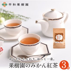 紅茶 ティーバッグ 果樹園のみかん紅茶 7包入×3個セット 国産 健康 有田みかんの皮 無添加 フルーツティー 無着色 送料無料 早和果樹園|sowamikan