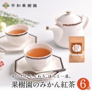 紅茶 ティーバッグ 果樹園のみかん紅茶 7包入×6個セット 国産 健康 有田みかんの皮 無添加 フルーツティー 無着色 送料無料 早和果樹園|sowamikan