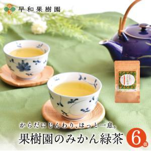 緑茶 ティーバッグ 果樹園のみかん緑茶 7包入×6個セット 国産 健康 有田みかんの皮 無添加 フルーツティー 無着色 送料無料 早和果樹園|sowamikan