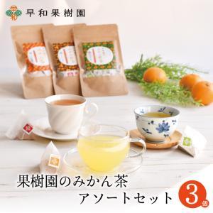 お茶 ティーバッグ 果樹園のみかん茶アソートセット 3個入 国産 健康 有田みかんの皮 無添加、フルーツティー 無着色 送料無料 早和果樹園|sowamikan