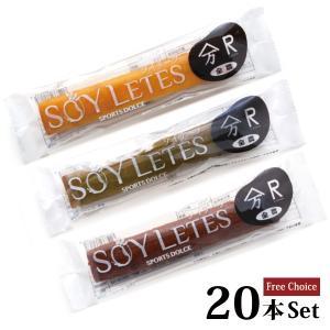ソイリーツ20個入 ご自宅用 フリーチョイス|soydeli-store