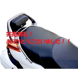 【完売御礼!】半額セール!ジェンマ250 CJ47A スリムキャリアバー ステンレス/ポリッシュ PLOT正規品|sp-shop