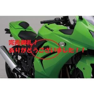 39%OFF!08'〜12' NINJAニンジャ250R エンジンプロテクター デイトナ【当店在庫あり】|sp-shop