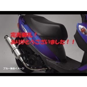 【完売御礼!】半額セール! 05'〜17' アドレスV125/G CF46A/4EA カラードインナー デイトナ|sp-shop