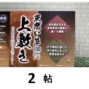 い草上敷き・2帖用(江戸間)176c×176c|sp2d|02
