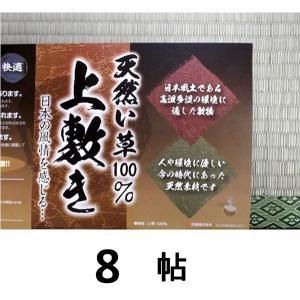 い草上敷き・8帖用(江戸間)352c×352c|sp2d|02