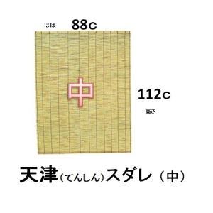 天津すだれ 中 88c×112c sp2d