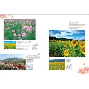四国旅マガジンGajA MOOK「大人の遠足 in 四国」|spcbooks|05