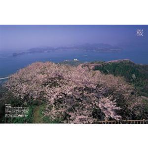四国旅マガジンGajA052号 2012年発刊|spcbooks|02