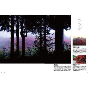 四国旅マガジンGajA052号 2012年発刊|spcbooks|03