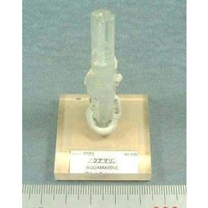アクアマリン2021|specimen-lapiz