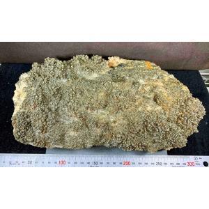 PYRITE(黄鉄鉱)青森県尾太鉱山blapiz-1453 specimen-lapiz