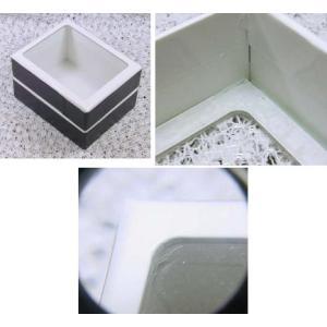 ガラス蓋付標本小箱2号|specimen-lapiz