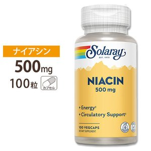 ナイアシン ビタミンB3 500mg 100粒|speedbody