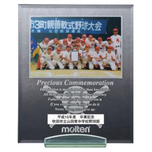 モルテン(Molten) メモリアルパブミラー野球 MPMSY|spg-sports