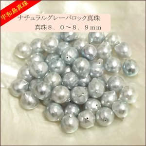 【宇和島真珠】ナチュラルグレーバロック50個8.0〜8.9mm(両穴開き)【越物】