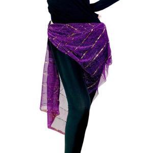 送料無料  ヒップスカーフ  ベリーダンス  レディース  社交ダンス  ステージ衣装  練習着  アクセサリー  レッスンウェア  ベリーダンス  コインスカーフ spillhope0601