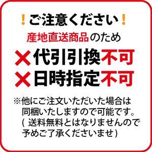 「日本一 こだわり卵」10個×3ケース【送料無料・産地直送のため代引不可】|spiral-shokutaku|02