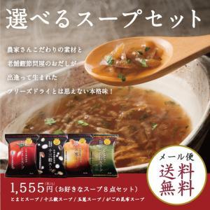 【メール便送料無料】林久右衛門商店の選べる8点スープセット|spiral-shokutaku