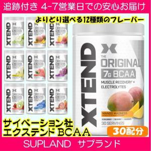 エクステンド BCAA + シトルリン 30配分 マンゴー/グレープ/グリーンアップル/オレンジ/パ...