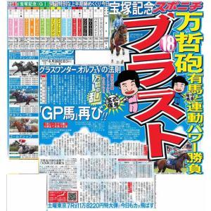 スポーツニッポン東京最終版6月28日付(宅配)